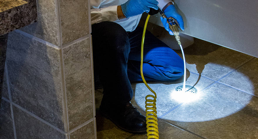 Pest professional applying pesticide to drain
