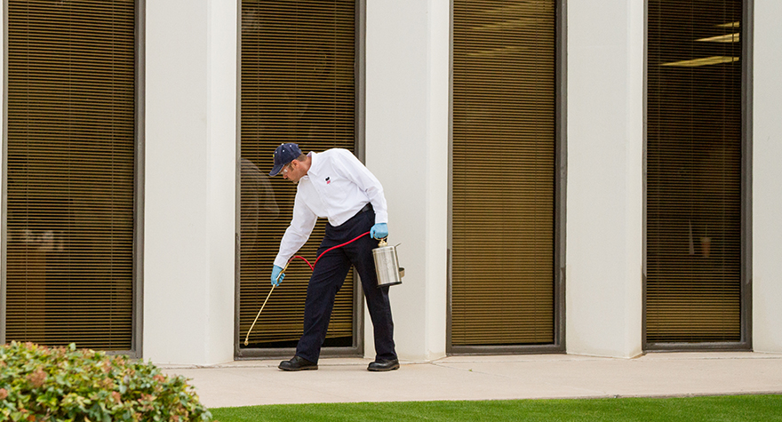 Pest professional applying pesticide around the perimeter of the building